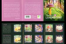 Luxemburg 2013 paddestoelen mushrooms  pilzen champignon  booklet  POSTFRIS/MNH