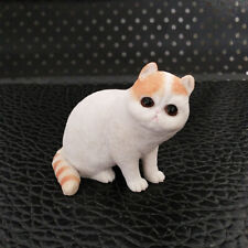 JJM Exotic Shorthair Cat Pet Figure Animal Resin Model kitten Collector Toy Gift