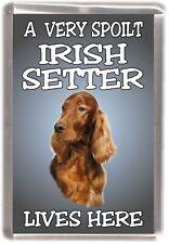 "Irish Setter Dog Fridge Magnet  ""A VERY SPOILT IRISH SETTER LIVES HERE"""