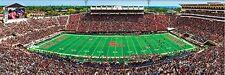 Jigsaw Puzzle NCAA University of Mississippi Vaught-Hemingway Stadium 1000 piece