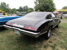 1973 Pontiac LeMans Rear Tail Trunk Panel Emblem Badge Trim OEM GM 9629056