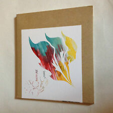 Animal Collective Campfire Songs CD Reissue PAW30 Card Sleeve Avant Folk Psych