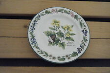 C4 Pottery Royal Worcester Herbs Small Plate 17x2 cm  7C2C