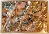 ABALONE INLAY BELT BUCKLE Silver Tone Made in Mexico Stunning Ethnic
