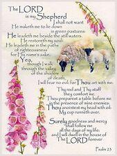 PSALM 23 Sheep bible scripture mounted painting watercolour print R NOLAN