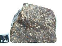 NWA 13733 LL(L)3  Primitive Chondrite Meteorite Rare,Type 3 Meteorite Main mass