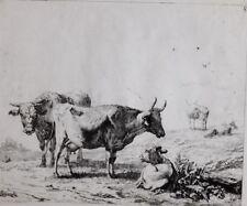 c1795 PRINT - ETCHING by SAMUEL GRANICHER - KAREL DUJARDIN