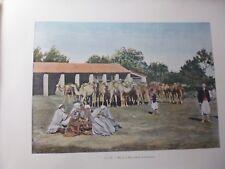 ALGERIE/Gravure 19°in folio couleur/ Halte de Marchands de Chameaux