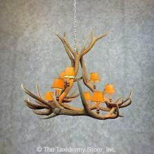 #21279 P | Elk Antler Chandelier For Sale