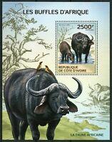 Ivory Coast Wild Animals Stamps 2014 MNH African Buffalo Buffaloes Fauna 1v S/S