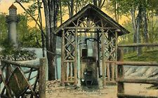 1912 Old Oaken Bucket and Rustic Well, Palmer Park, Detroit, Michigan Postcard