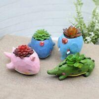 Animal Planter Pot Whale Succulent Plant Pot Design Home Garden Decor