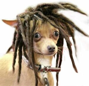 AfroDog Costumes Brown Dreadlock Extension Synthetic Hair Pet Dog Cat Wigs