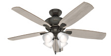 Hunter 53215 Indoor Amberlin Ceiling Fan with LED Light, Bronze/Brown