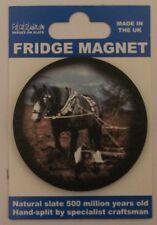 Horse Equestrian Heavy Horse Fridge Magnet  Welsh Slate