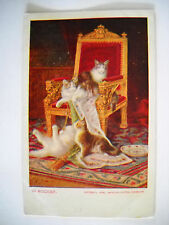 4 CATS 1 DOG PLAY ON CHAIR 1906 antique unused postcard CHROMOLITHO in mischief
