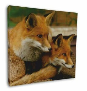 """Cute Red Fox Cubs 12""""x12"""" Canvas Wall Art Picture Print, Animal Gifts AF-11-C12"""