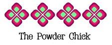 Bengal Clear Coat Top Coat 49/01234 Powder Coating Paint 1lb Bag NEW