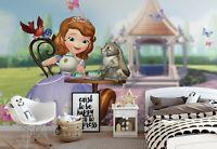Disney wallpaper mural 144x100inch photo wall decor Princess Sofia girls bedroom