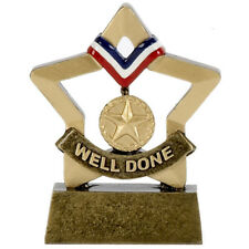 SPORTS DAY CUP WELL DONE TROPHY ENGRAVED FREE WINNER RESIN MINI STAR TROPHIES