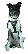 The Company of Animals Padded Dog Harnesses