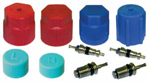 AC A/C System Cap & Valve Cores Rapid Seal Kit Air Conditioning Service