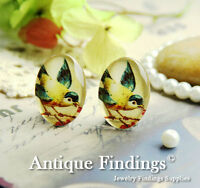 4PCS 18X25mm Handmade Lovely Bird Glass Dome Cabochon Cameo Cabs BCH823E