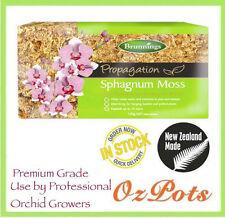 150g Sphagnum Moss - Premium Grade - Helps to retain water & nutrients in pots