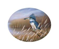 "43 ""Belted Kingfisher"" 19x16 Canvas Print by Robert Metropulos"