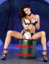 LITA WWE WCW WWF DIVAS Poster Print 24x36 WALL Photo 2
