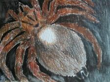 ACEO poisonous scary spider tarantula miniature art print from my original Aceo