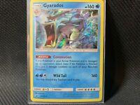 holo-foil GYARADOS Pokemon Card Dragon Majesty 20//70 - NM//Mint