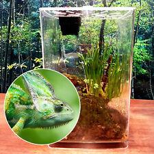 Reptile Cage Breeding Box Tarantula Insect Lizard Amphibian Pet Tank Tool Box