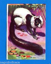 ANIMALI - Lampo 1964 - Figurina-Sticker n. 39 - VARI -New