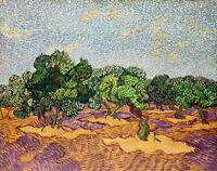 Olive Trees I by Vincent van Gogh 60cm x 47.5cm High Quality Canvas Print