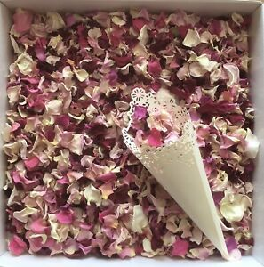 Dried Rose Petal Wedding Confetti Natural Biodegradable Ivory Pink Burgundy Mix