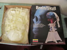 Lindberg Brain Skull model kit NEW UNASSEMBLED