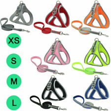 Reflective Mesh Vest-style Pet Harness & Leash  Dog Chest Strap Leash Rope Suits