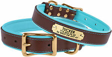 Personalized Leather Dog Collar Soft Padded Pink Red Purple Blue