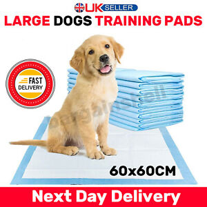 Heavy Duty Dog Puppy Large Training Wee Pads Floor Toilet Mats 60x60cm 80 Pads
