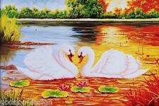 Kit punto croce CIGNI IM TRAMONTO 58X82 CM punto croce Swan SUNSET #80032