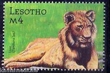 Lion Wildcats, Wild Animals, Lesotho MNH - N72