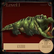 """knurri   Snarly   WOW   World of Warcraft   battlepet   Pet   Animale Domestico"""