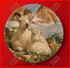 """The Beauty of Polar Wildlife Collectors Plate """"The Dall Sheep"""" - MIB"""