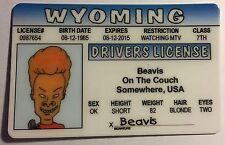 Beavis - Beavis and Butt-Head - Drivers License - Novelty