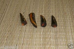 """4 pc,HORN TOGGLE, 2 HOLE BUTTON, dyed red 2"""" long ."""