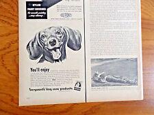 1950 Sergeant's Dog Care Ad Dachshund Dog