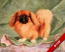 THE STUBBORN & OPINIONATED PEKINESE PET DOG ART PAINTING PRINT ON REAL CANVAS