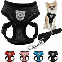 Breathable Mesh Small Dog Cat Pet Harness Leash Collars Puppy Vest Adjustable