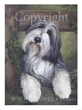 """Collie Barbudo Retrato """"ella"""" Fine Art Print by Lynn Paterson"""